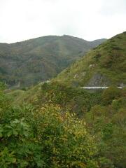 大谷峠から森林公園への尾根筋
