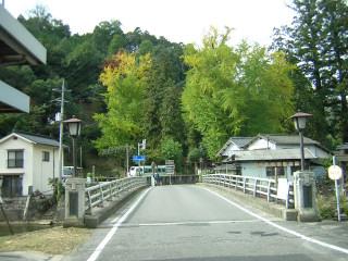 吉備中央町惣社宮のイチョウ